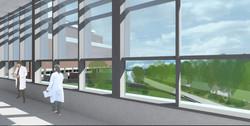 Surgical corridor view