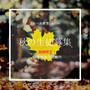 秋のご入会キャンペーン!限定特別特典のご案内