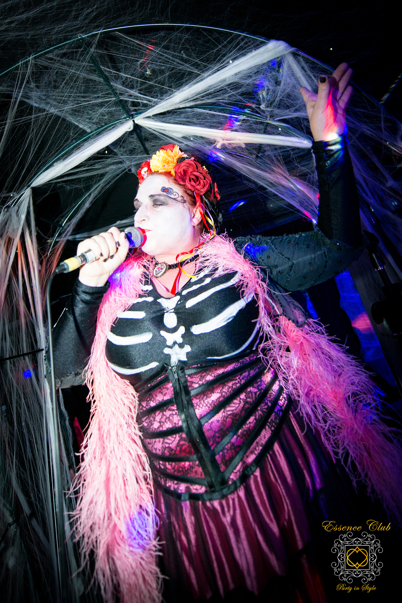 Katherine Ellis Live PA Singer
