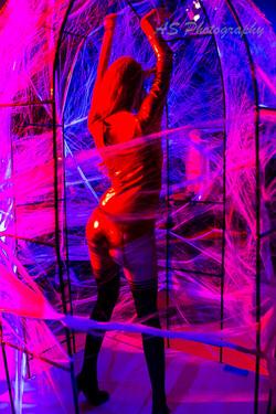 Essence club halloween dancing web cage 4