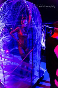 Essence club halloween dancing web cage 5