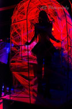 Dancer web silloutte