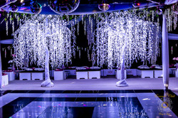 LED White Weeping Willow Tree (H3.5m W3.2m)