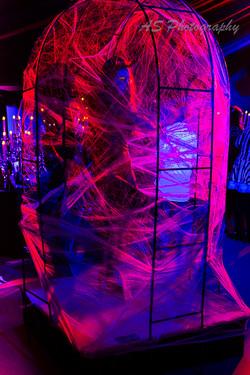 Essence club halloween dancing web cage 2