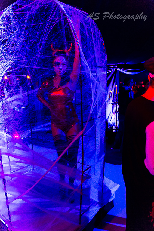 Essence club halloween dancing web cage 6