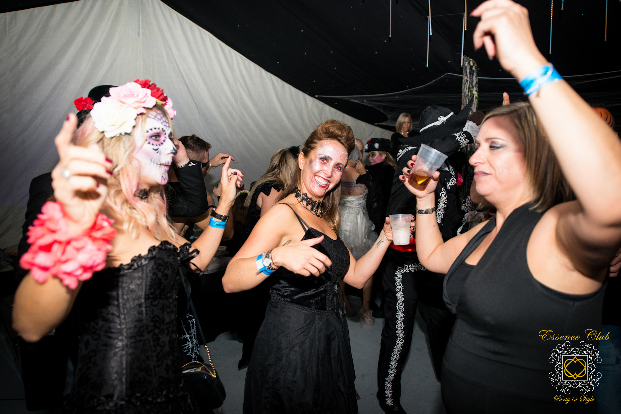 Themed Parties from essence