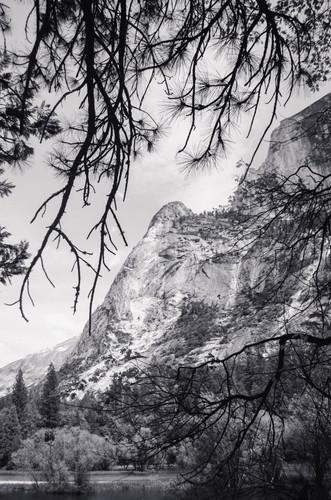 Marla Manes Photography Yosemite Black and White