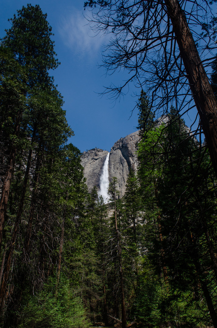 Marla Manes Photography Yosemite Falls