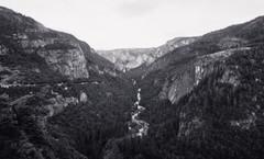 Marla Manes Photography Yosemite