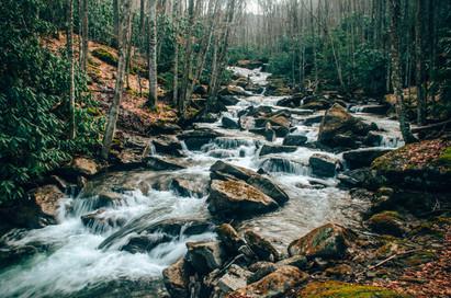 Marla Manes Photography River in North Carolina