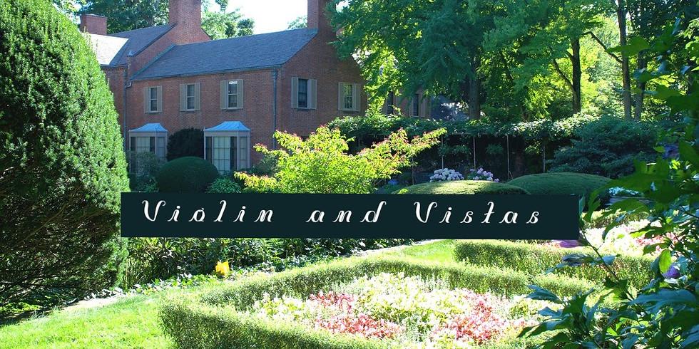 Violin and Vistas