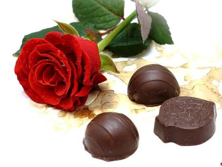 Medicinal Mushroom chocolates?! Yes, please!