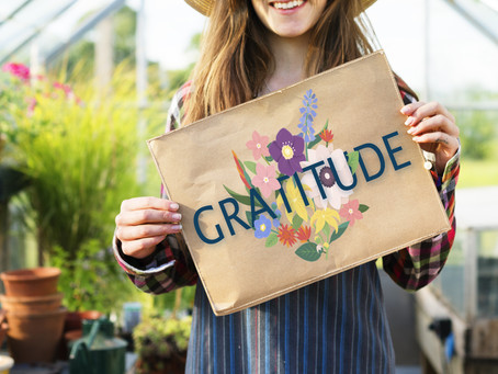 Practicing Gratitude is Good Medicine—4 simple, powerful ways to begin now