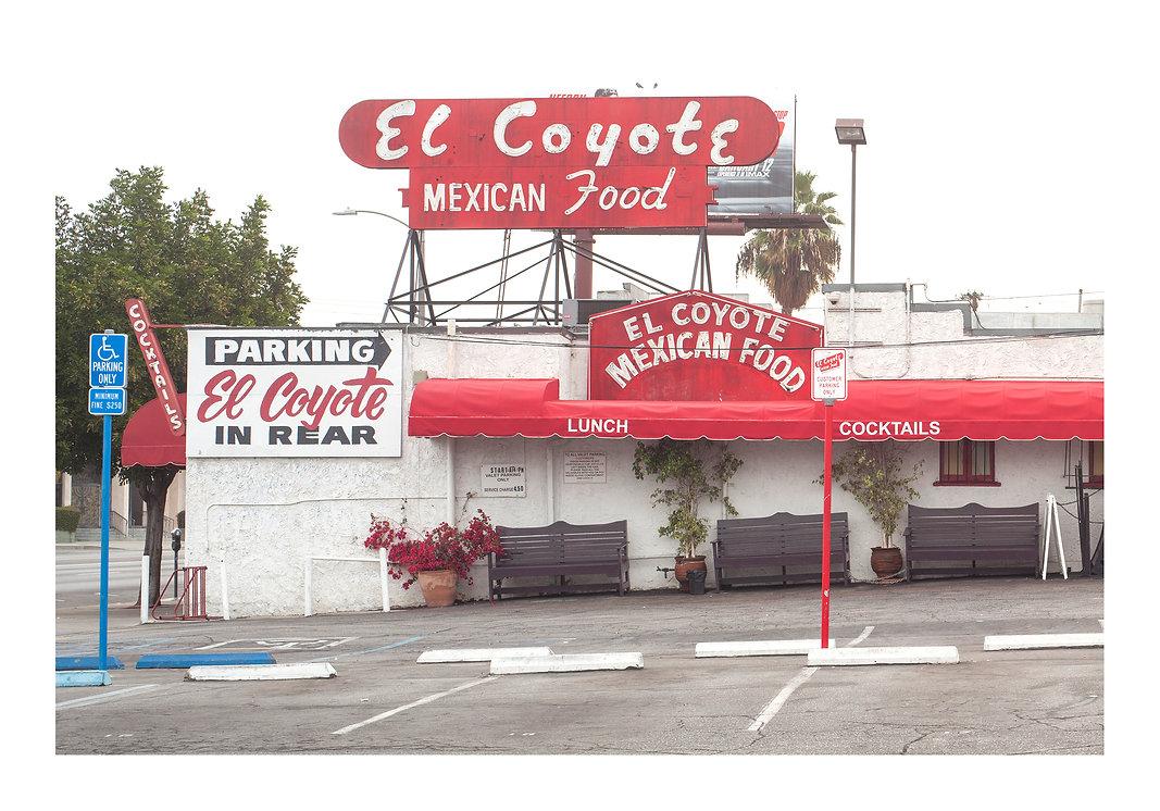 EL COYOTE.jpg