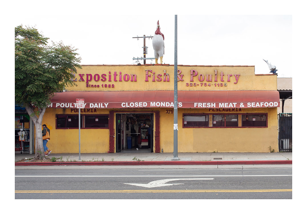 FISH AND POULTRY 1.jpg