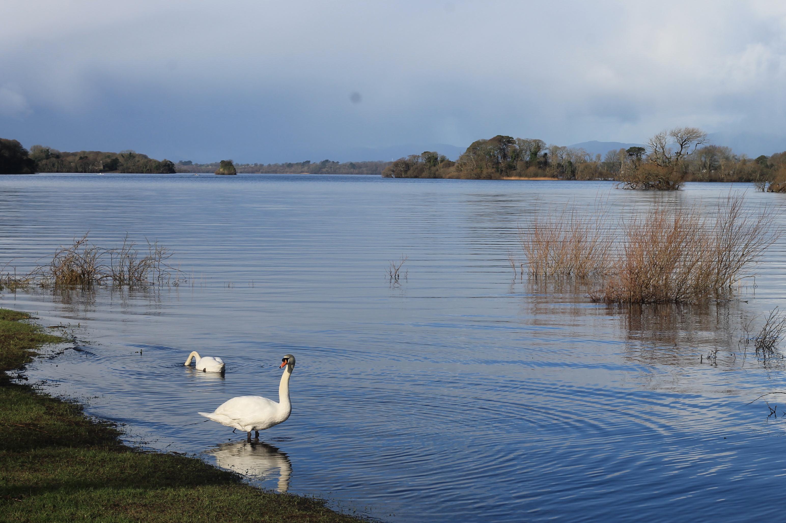 Killarney National Park Lakes