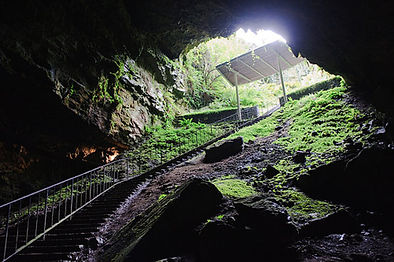 The Dunmore Caves Private Tour