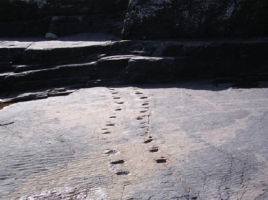 Ancient Footprints, Valentia Island