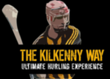 Try Irish Sport & Culture - Hurling Sport Experience