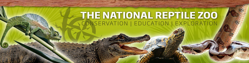Family fun at The National Reptile Zoo