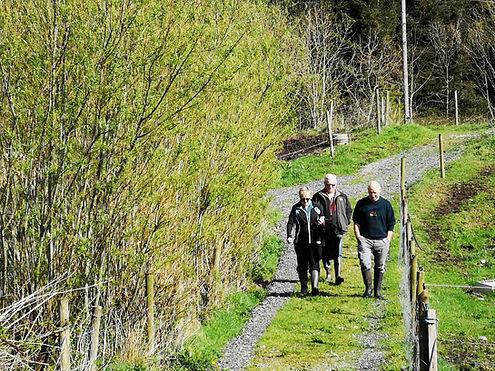 Irish Countryside Walking Tour