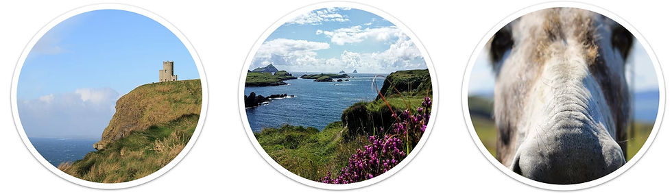 multi-day private group tours Ireland