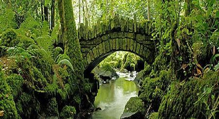 Guided tour from Dublin to Kilkenny - Thomastown & Kilfane Glen