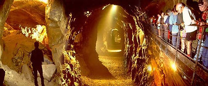 Ireland Family Tour - The Ailwee Caves & Bird of Prey Centre