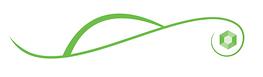 Little Gem Tours Ireland Green Logo
