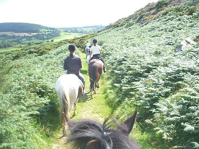 family fun Horseriding in the Wicklow Mountains