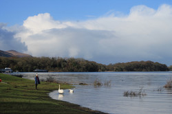 Killarney National Park Private Tour