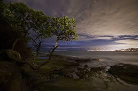 Stillness & Gratitude