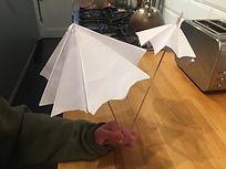 Paper Umbrella.JPG