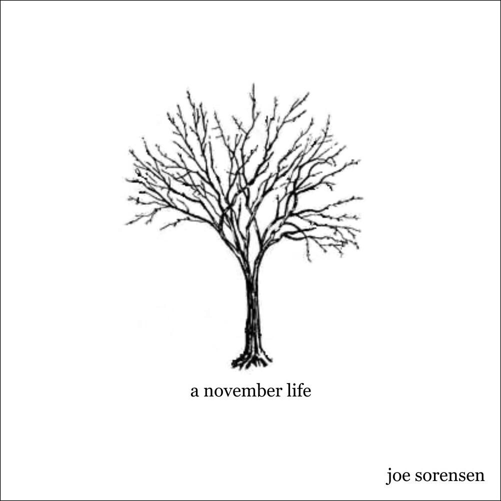 A November Life (2008)