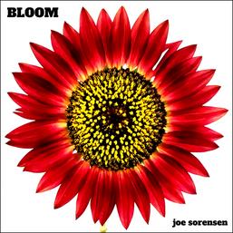 BLOOM (2012)