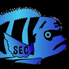 SEC_edited.png