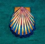 Shell on Blue