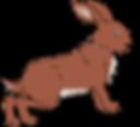 quatre petits lapins