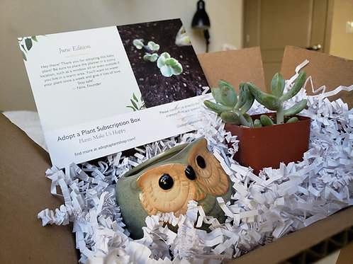 Adopt a Plant Subscription Box