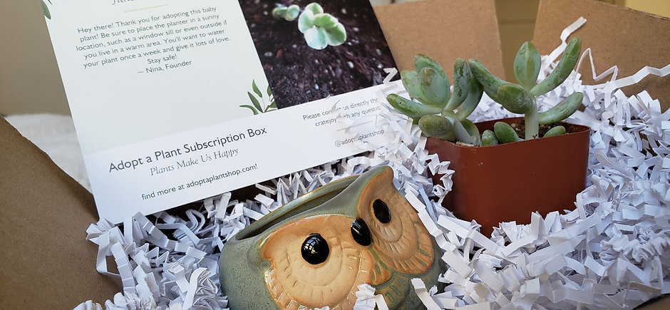 Adopt a Plant Subscription Box
