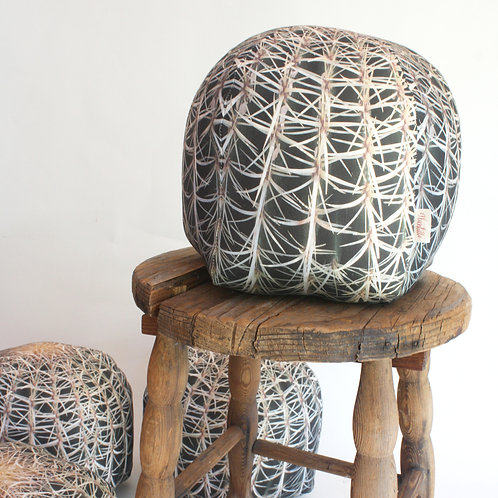 Desert pillow : Barrel Cactus