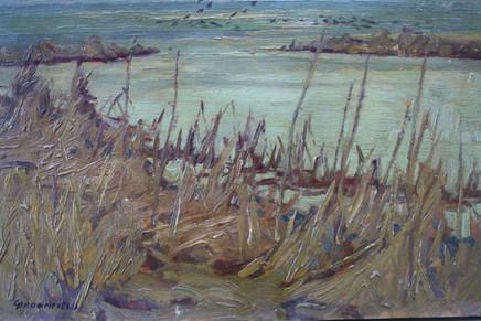 Spring in the Marshland, Bapteste Lake