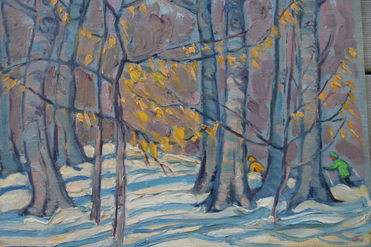 Beech Trees and Skiers