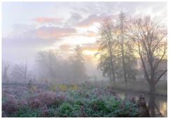 Beddington Mist by Brian C