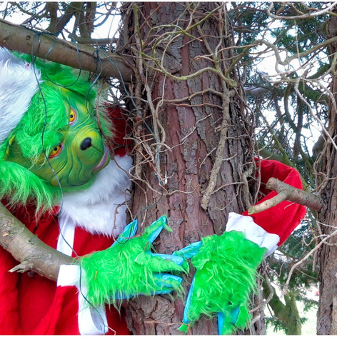 THE GRINCH LOST OUT TO COVID THIS YEAR! by Gillian M