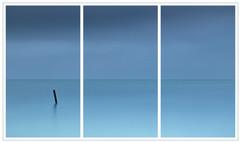 The Big Blue by Mark B