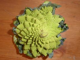 Cauliflower!!! by Geoff N