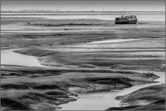 Low Tide by Alfred C