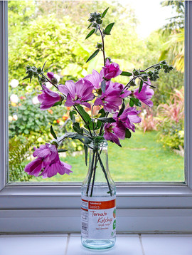 Makeshift Vase by Dave S