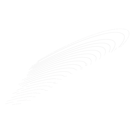 元素 - 羽毛-02.png